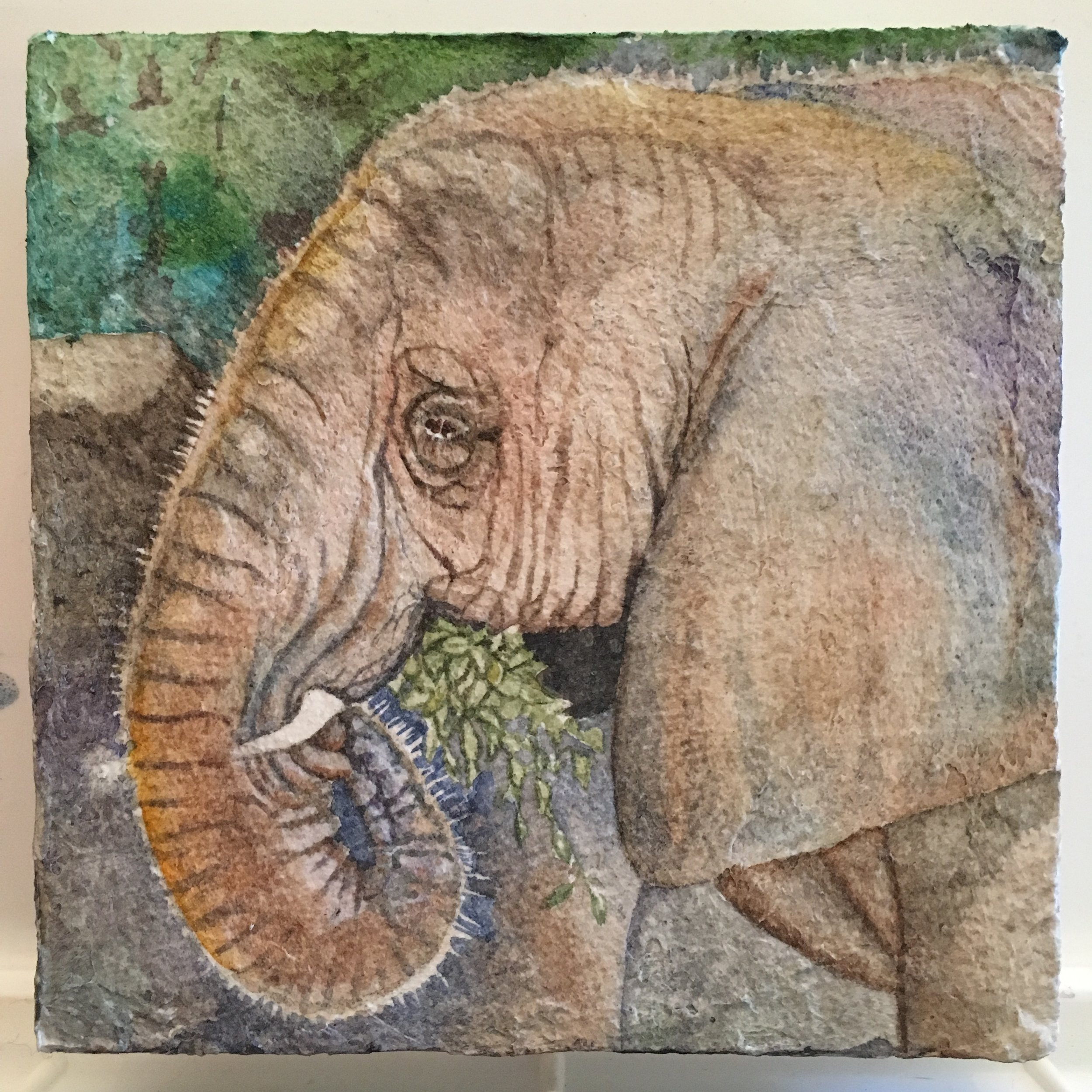 The Fiber Paste texture is fabulous for this wrinkly pachyderm!