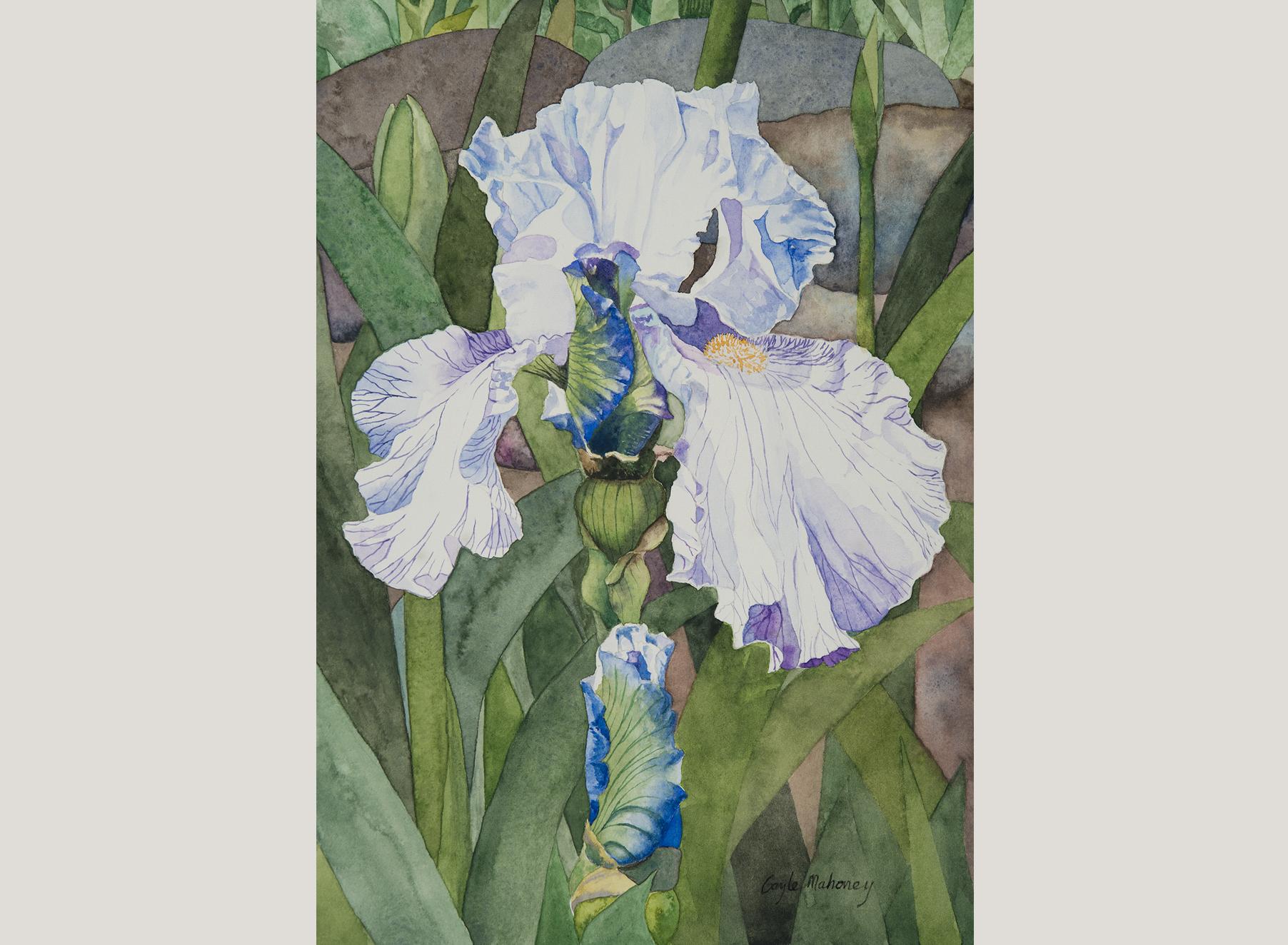 Iris and Stones