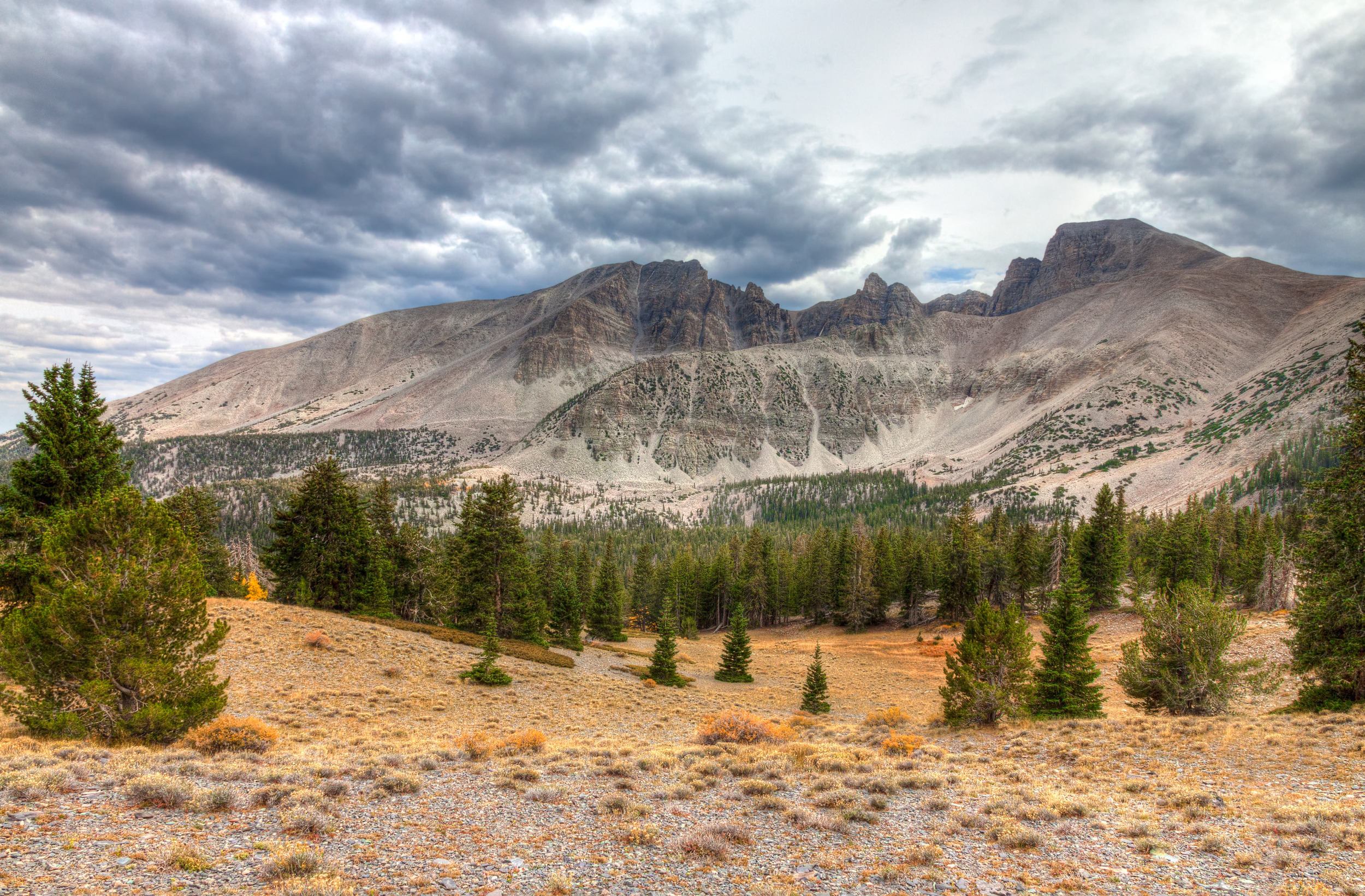 Views From Wheeler Peak Scenic Drive –(PHOTO:Arlene Treiber Waller/SHUTTERSTOCK)