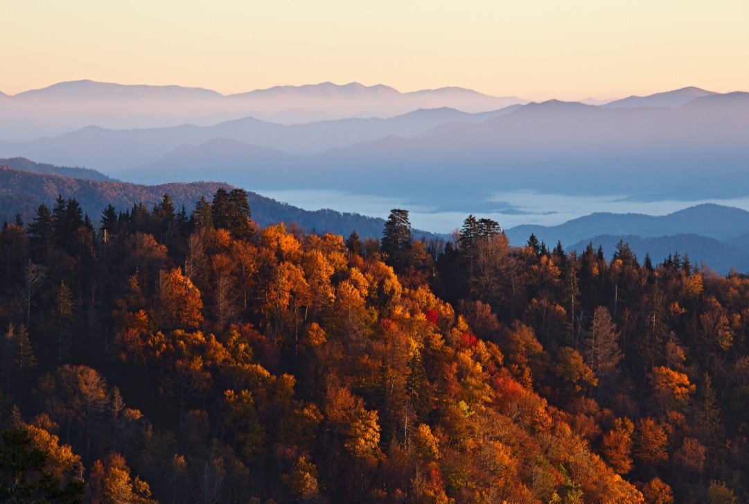 (The stunning views from various overlooks throughout Great Smoky Mountains National Park leave no doubt that The Smoky Mountains are one of the best places in the world to see fall colors.- Photo by  Nickolay Khoroshkov /SHUTTERSTOCK)