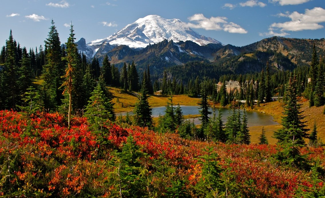 (Beautiful shot of Mount Rainier during early Autumn - Photo by Mike Peters /SHUTTERSTOCK)