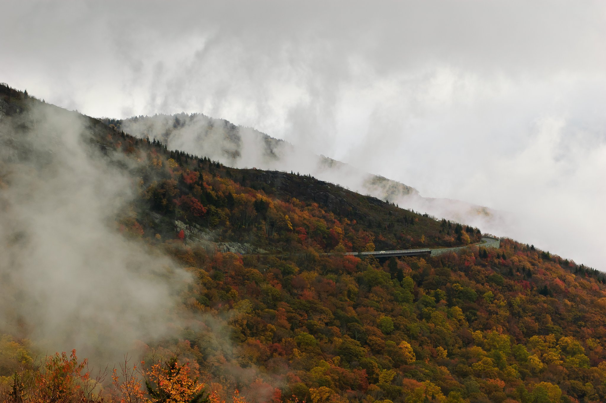 (Morning Fog along The Blue Ridge Parkway - Photo by Kyle Tsui /Flickr)