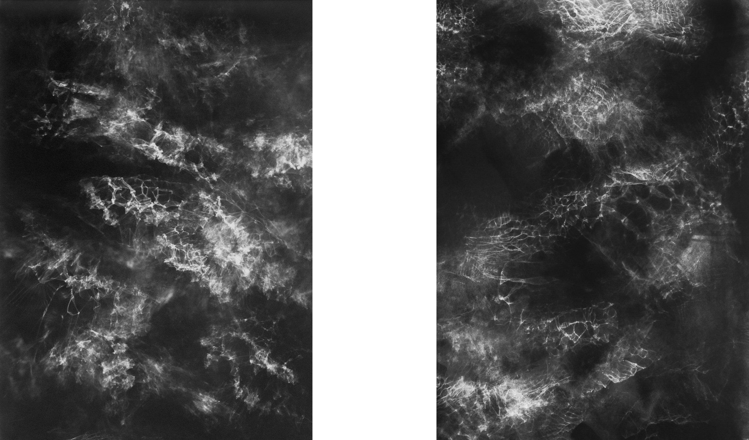 Seeing Light Through Light, 2015