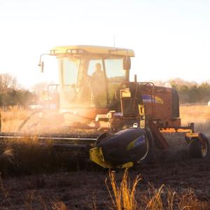 farm1x.jpg