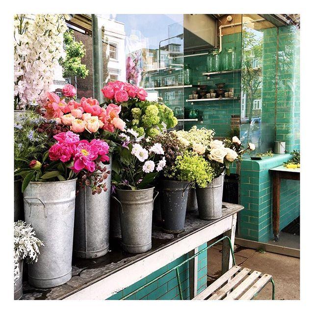 Sunshine in Notting Hill today! #nottinghill #londonlove . . . . . #londonforyou #london_enthusiast #thisislondon #mysecretlondon #acolorstory #ig_captures #vsco #vscocam #vscogood #vscogrid #vscogram #liveauthentic #justgoshoot #floral #travelersnotebook #travelgram #flowershop #travelgirl #traveljunkie #roundtheworld #vacation #socialenvy #visiting #instago #instapassport #instatraveling #mytravelgram #igtravel