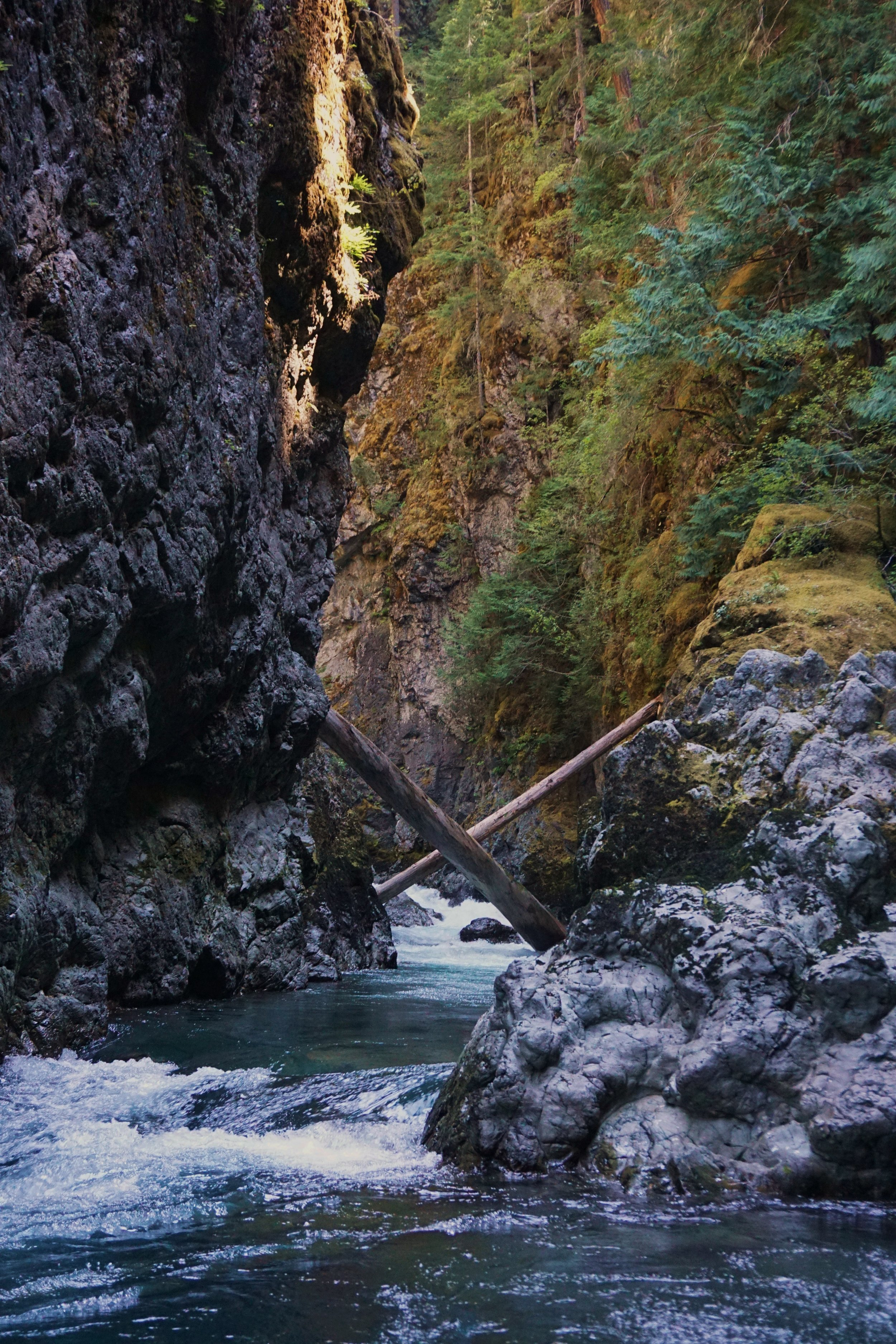"""Looking upstream into the bottom of """"Nightmare"""" - the unscoutable, unportageable, psychological crux to my trip through the Grand Canyon of the Elwha"""
