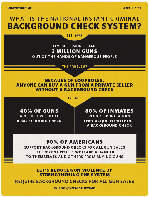Infographic: Background Checks on Guns