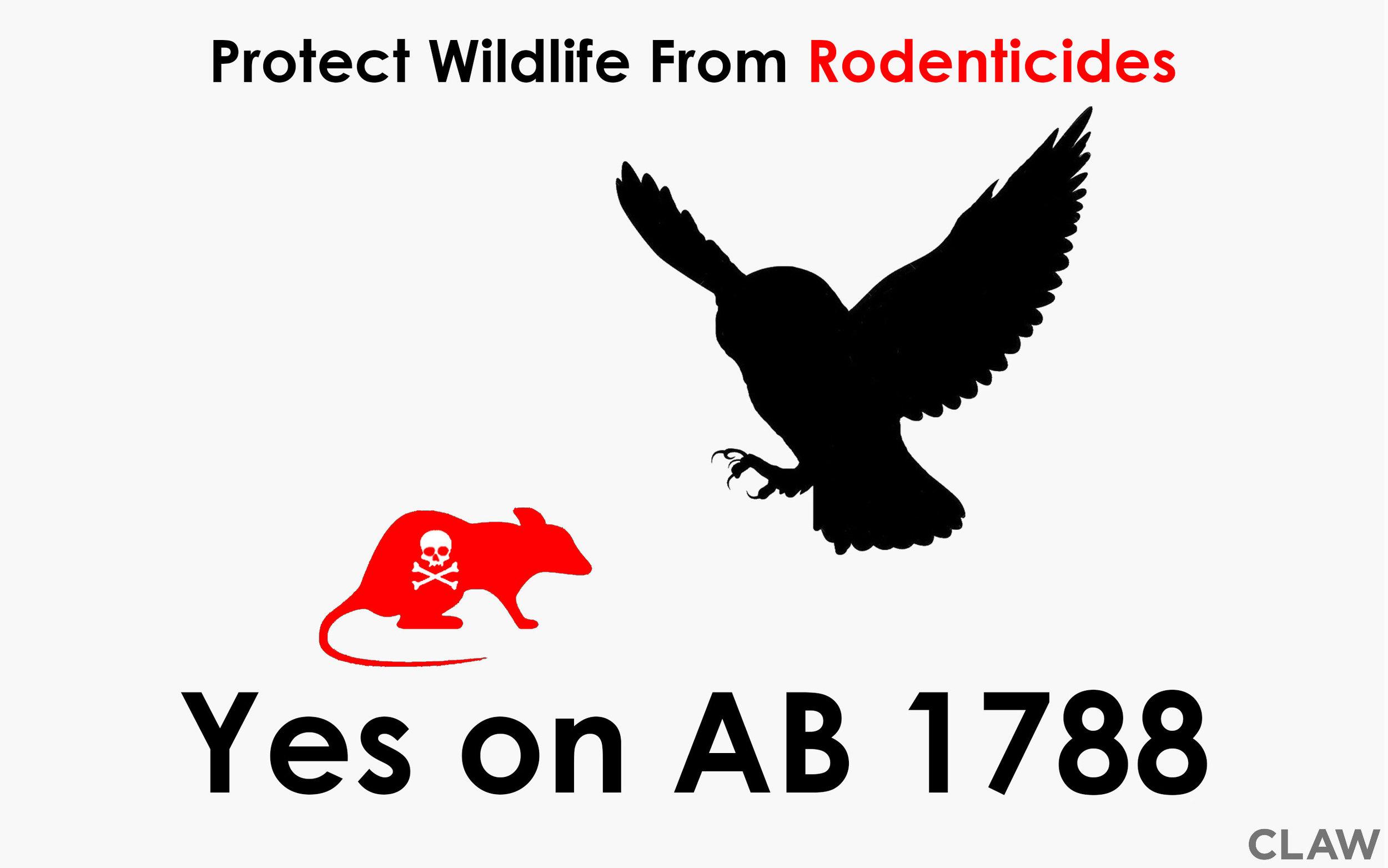 AB-1788.jpg