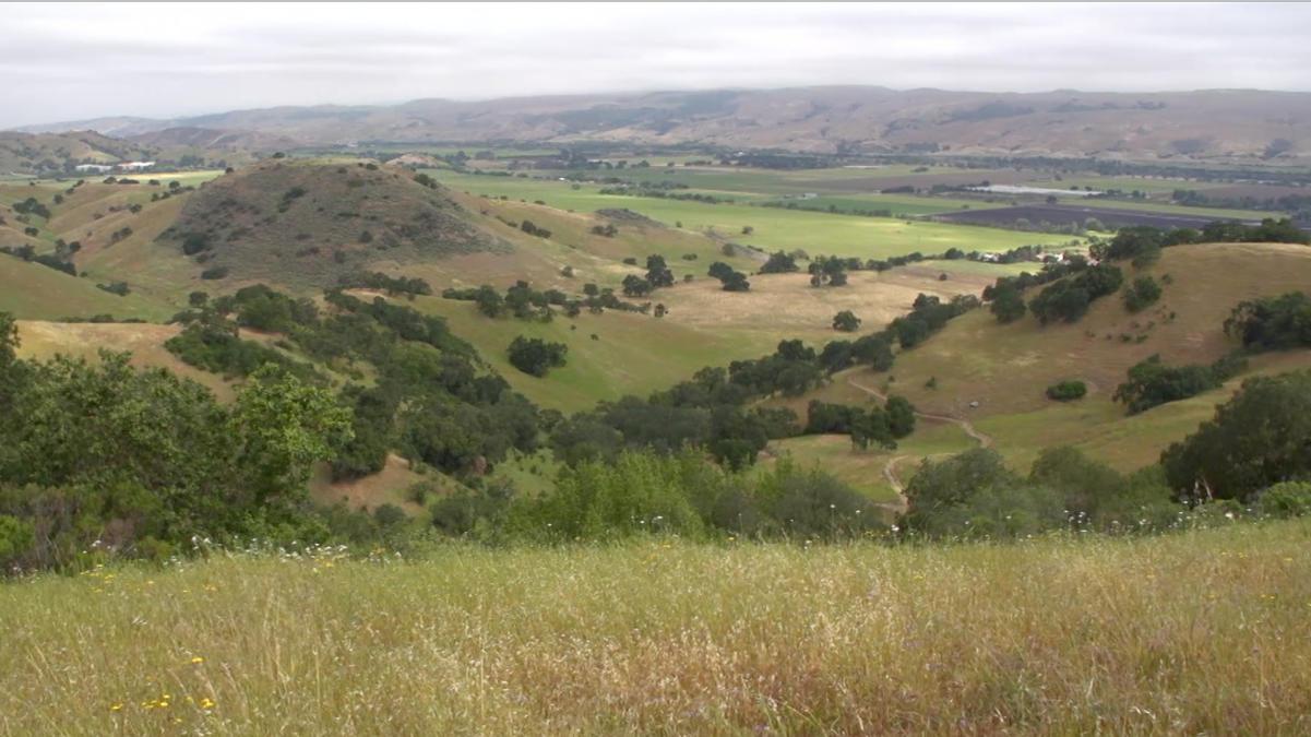 Saving+Coyote+Valley+STILL.jpg