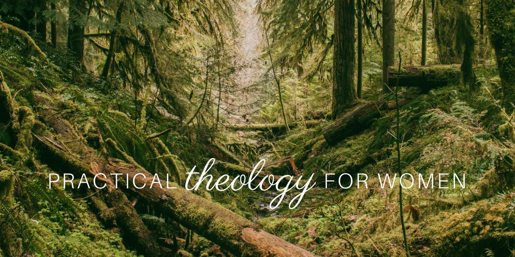Theology for Women Blog - Wendy Alsup's blog explores theological topics and issues and brings them to practical and applicable conclusions for women.