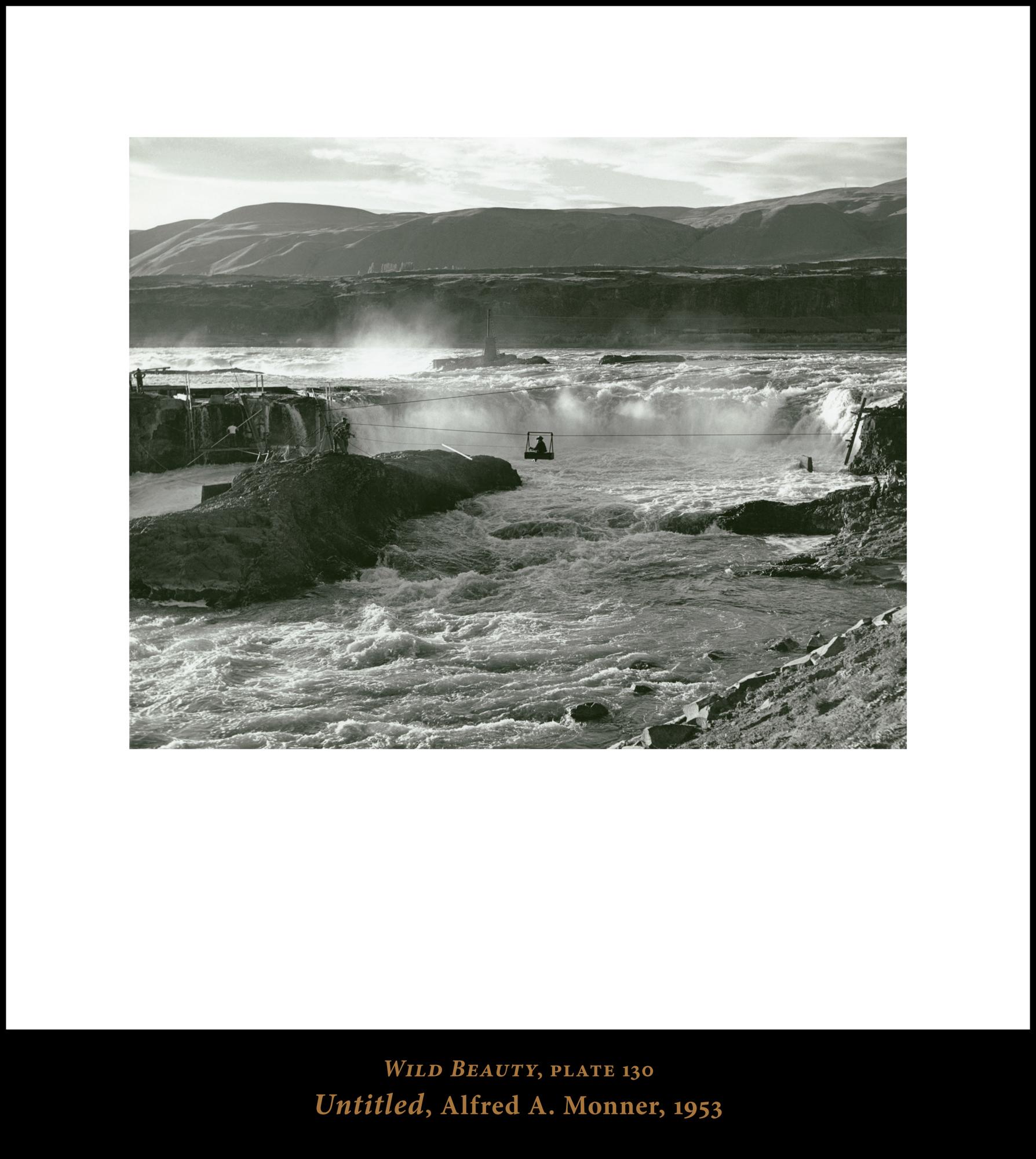 Print Gallery Slideshow 130.jpg