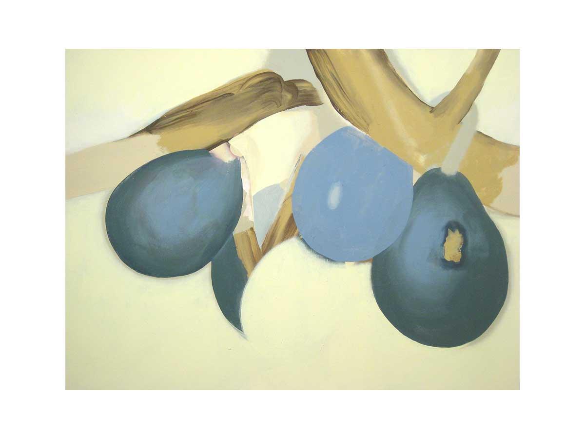 Fruits 2011