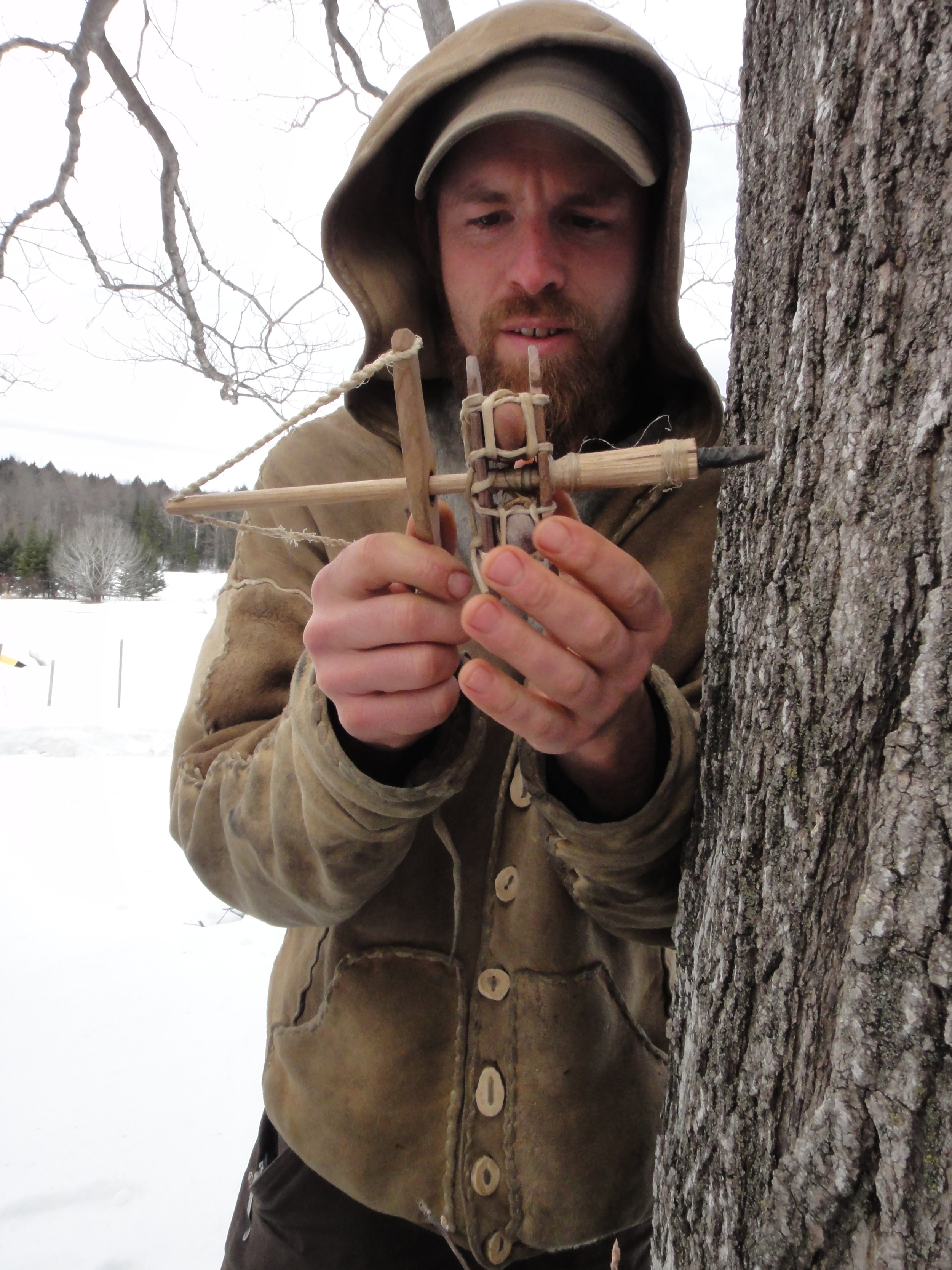 tapping maple with pumpdrill.JPG