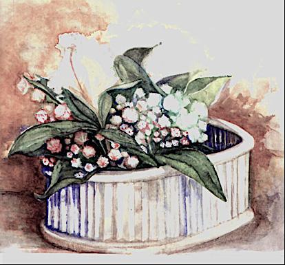 Mountain Laurel watercolor