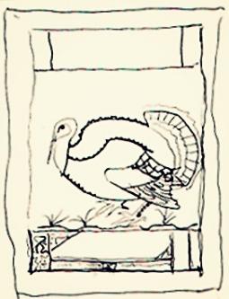 turkeydraw.jpg