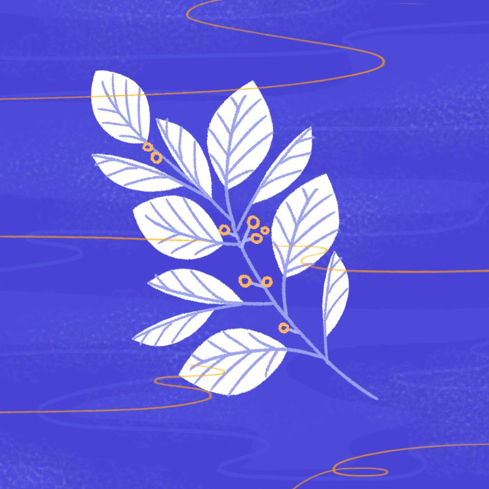 leaf_color.jpg