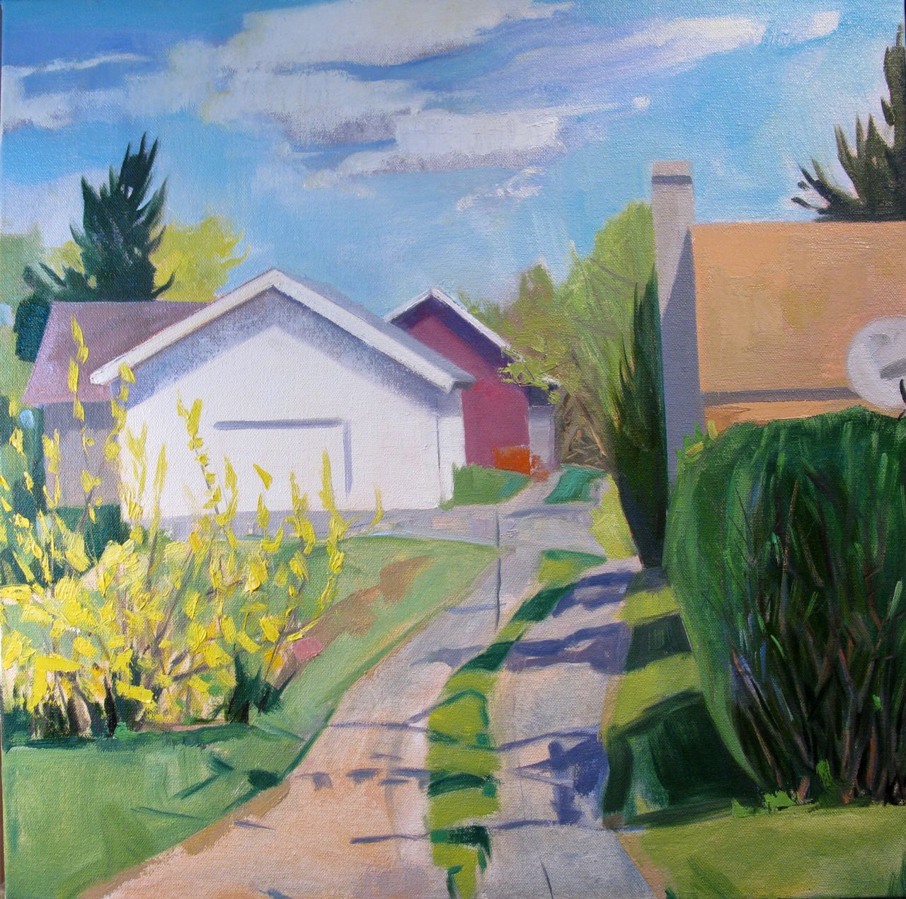 Alley Forsythia 20x20 oil.jpg