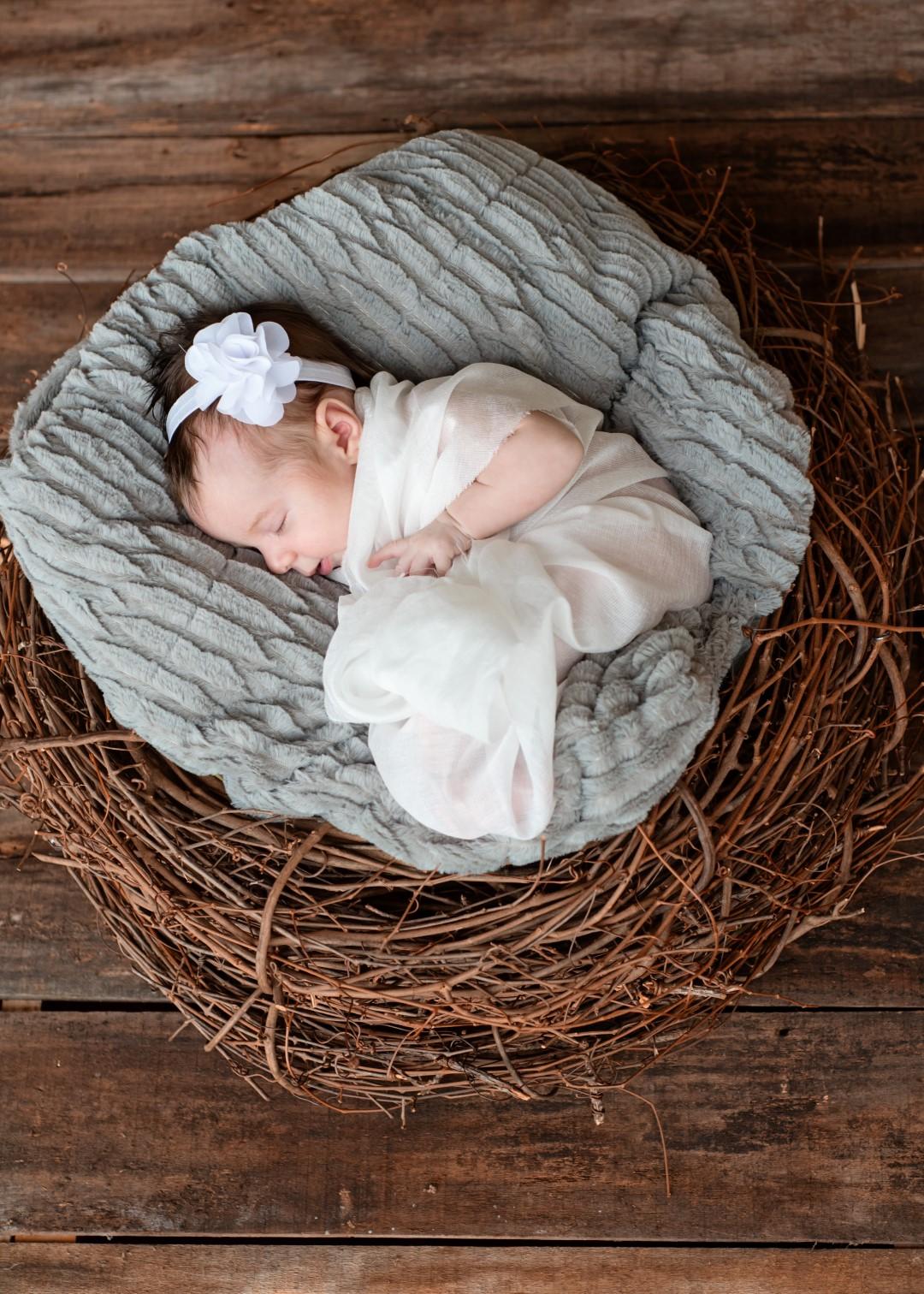 Cowen Baby 05 (Large).jpg