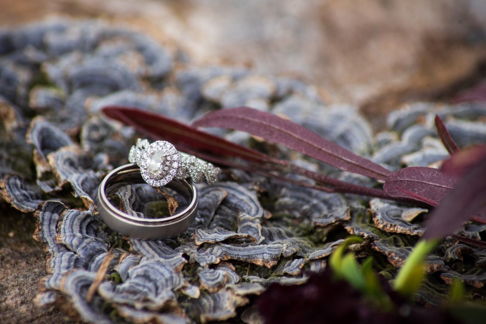 Bates_Roberts_Wedding_SneakPeek_20 (Large).JPG