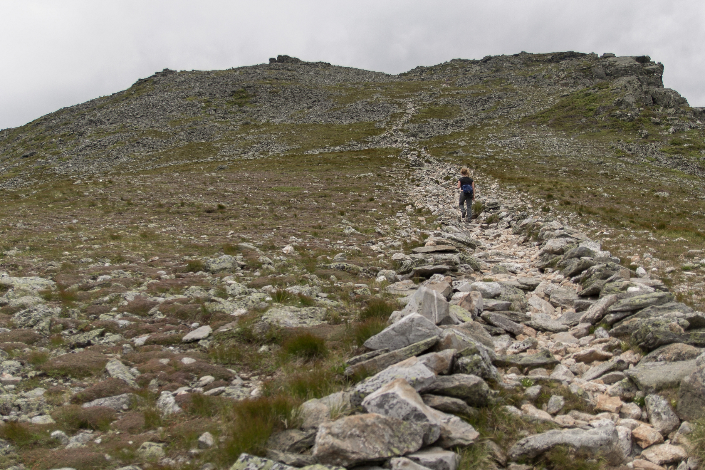 Ascending through the alpine up to Boott Spur Peak.