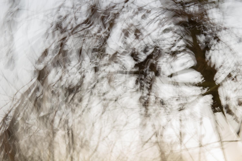 winters_reflection.jpg