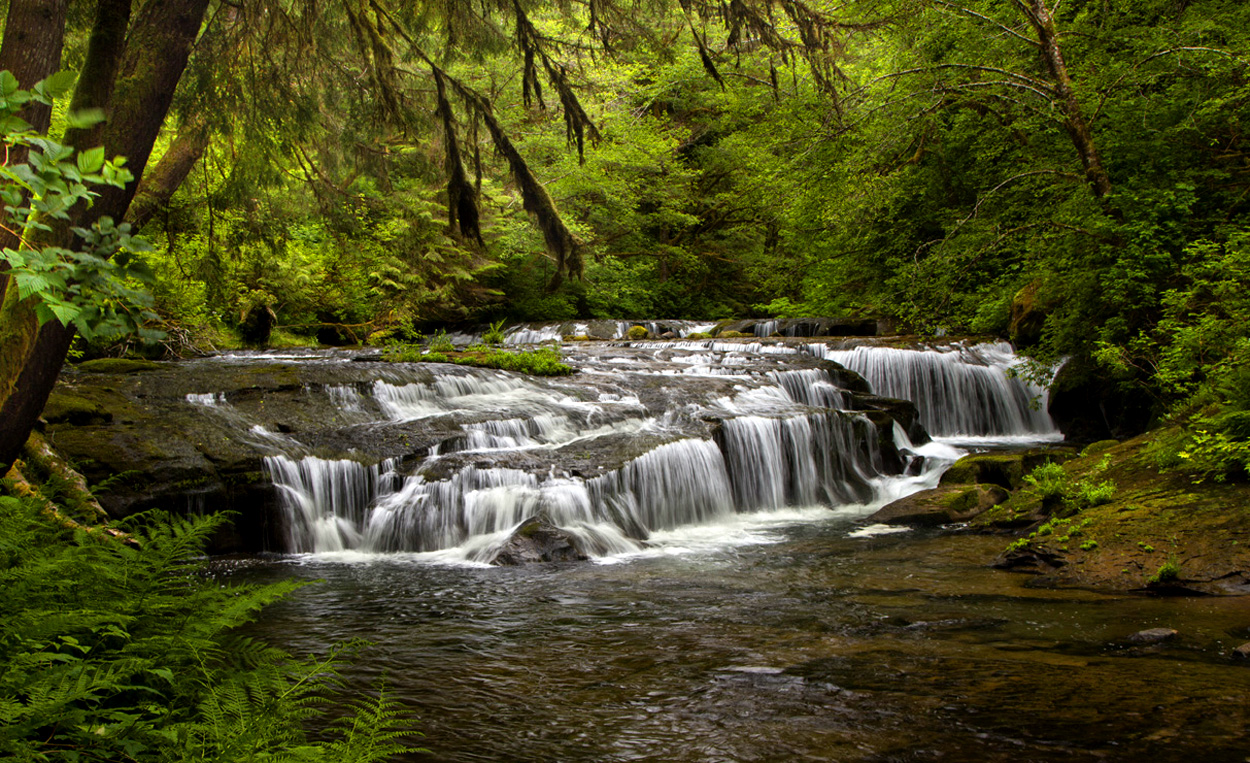 Photo #3+Sweet Creek Falls.jpg