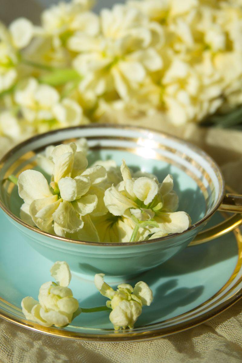 FlowersTeaCup.jpg