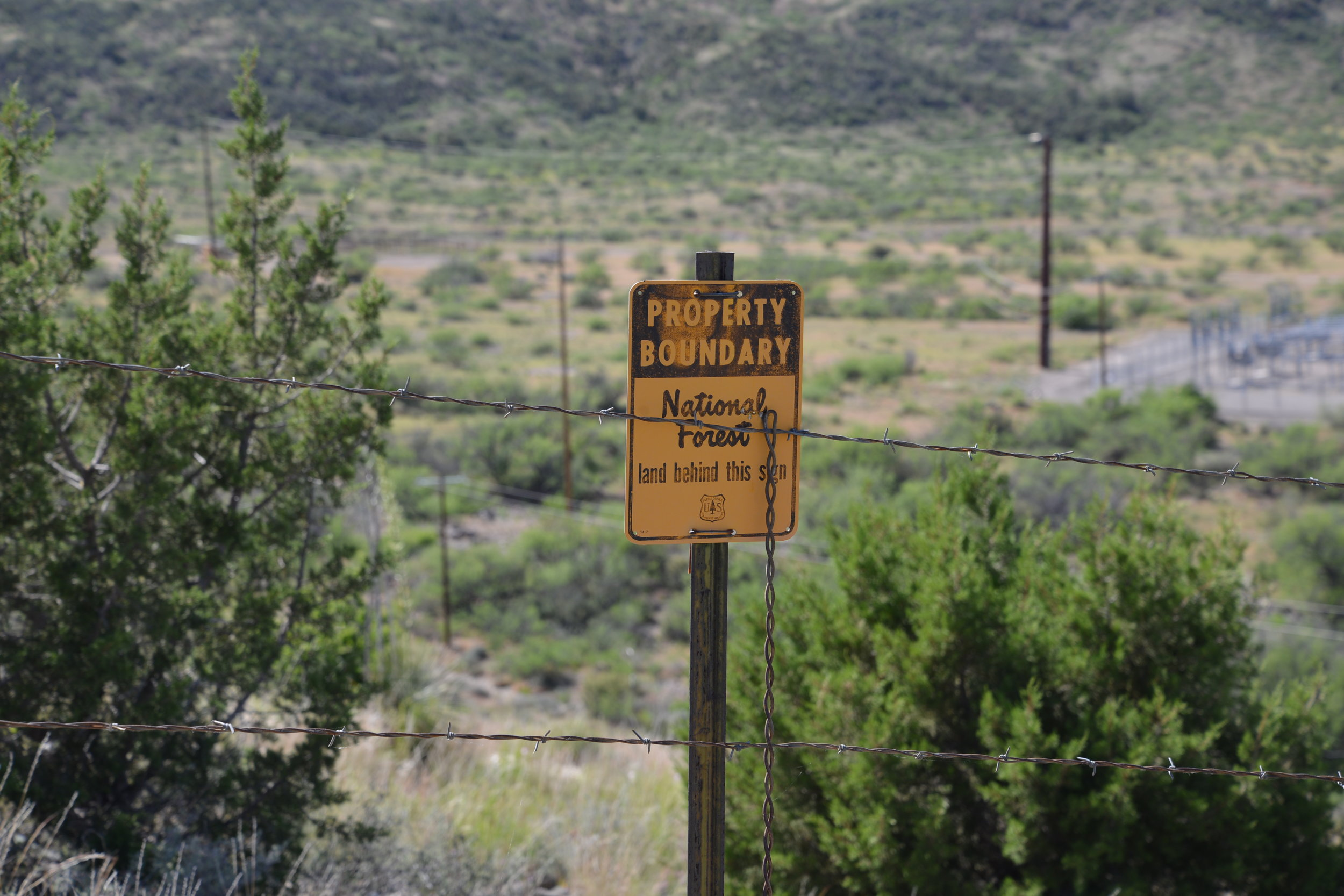 Forest sign.JPG
