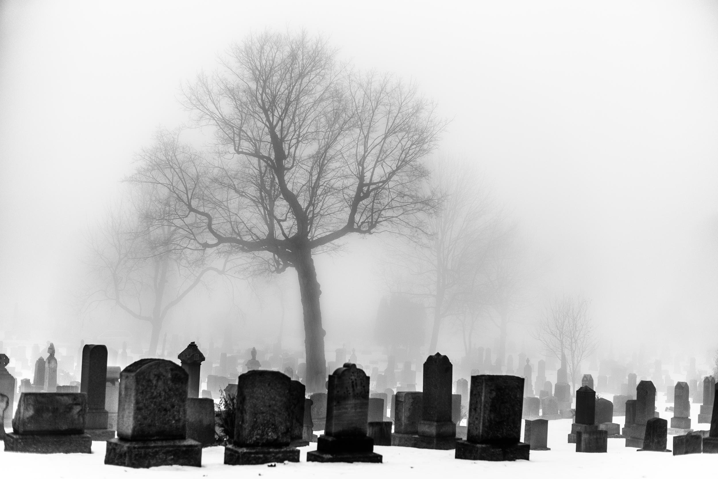 Cemetery Fog_NoPano.jpg