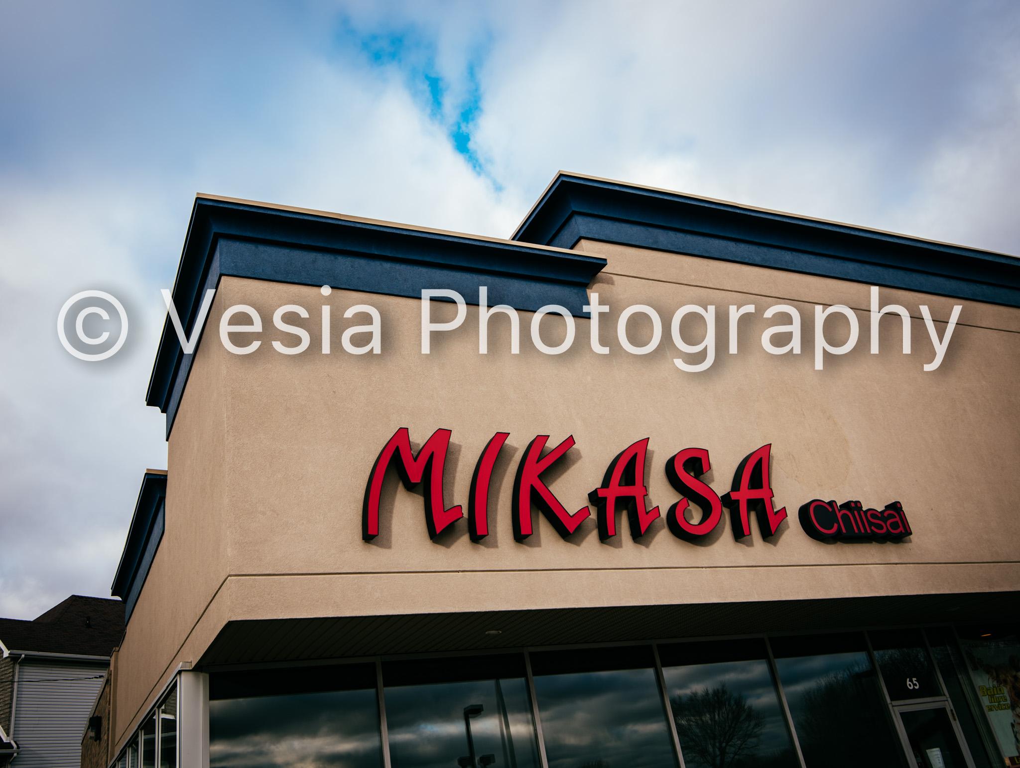 Mikasa_Samson_Proofs-13.jpg