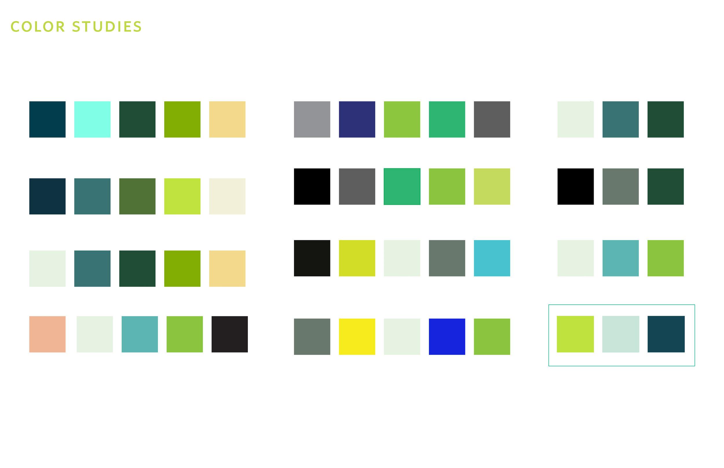 identity process7.jpg