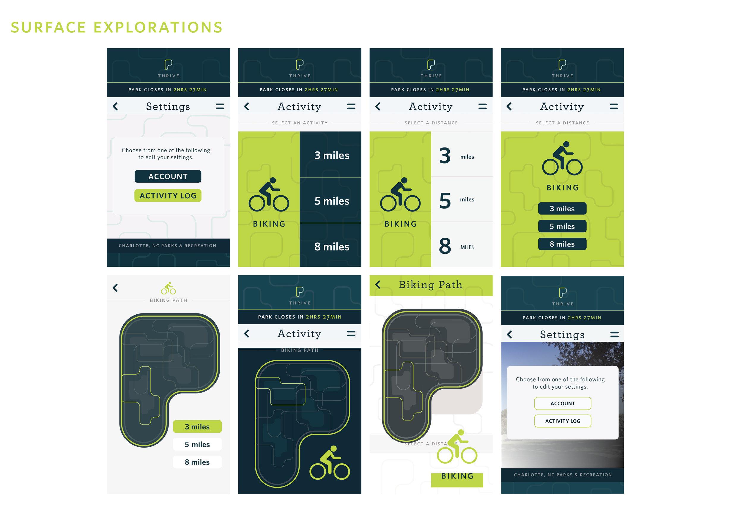 park app process5.jpg