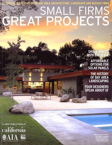 Small Firms Great Projects