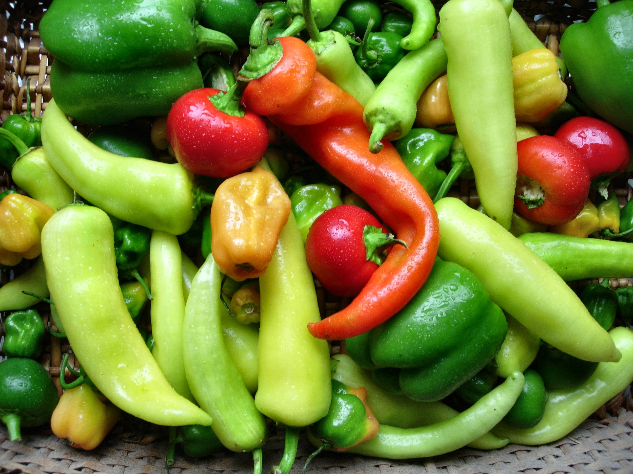 Peppers are a great food for new moms