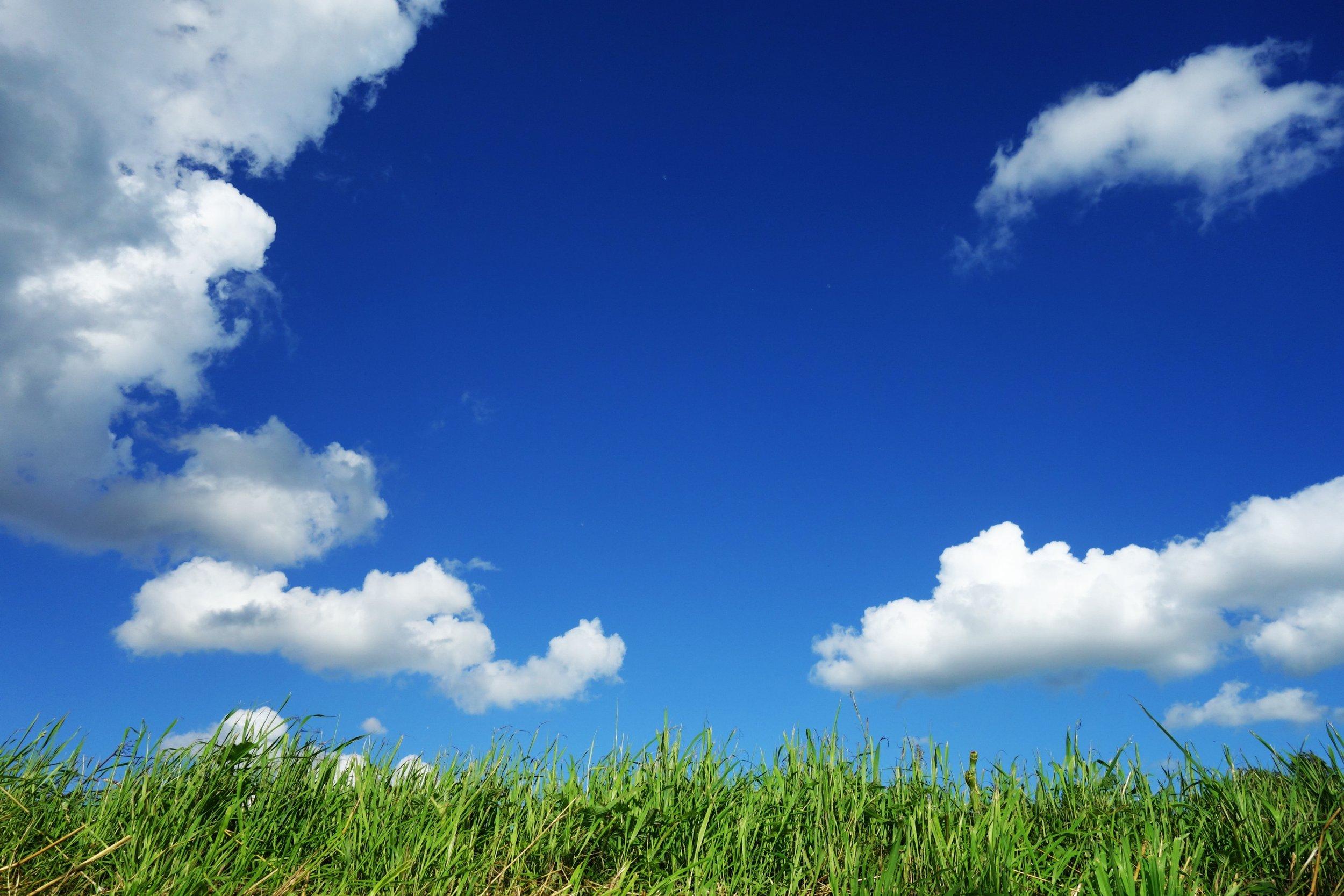 blue sky brain.jpg