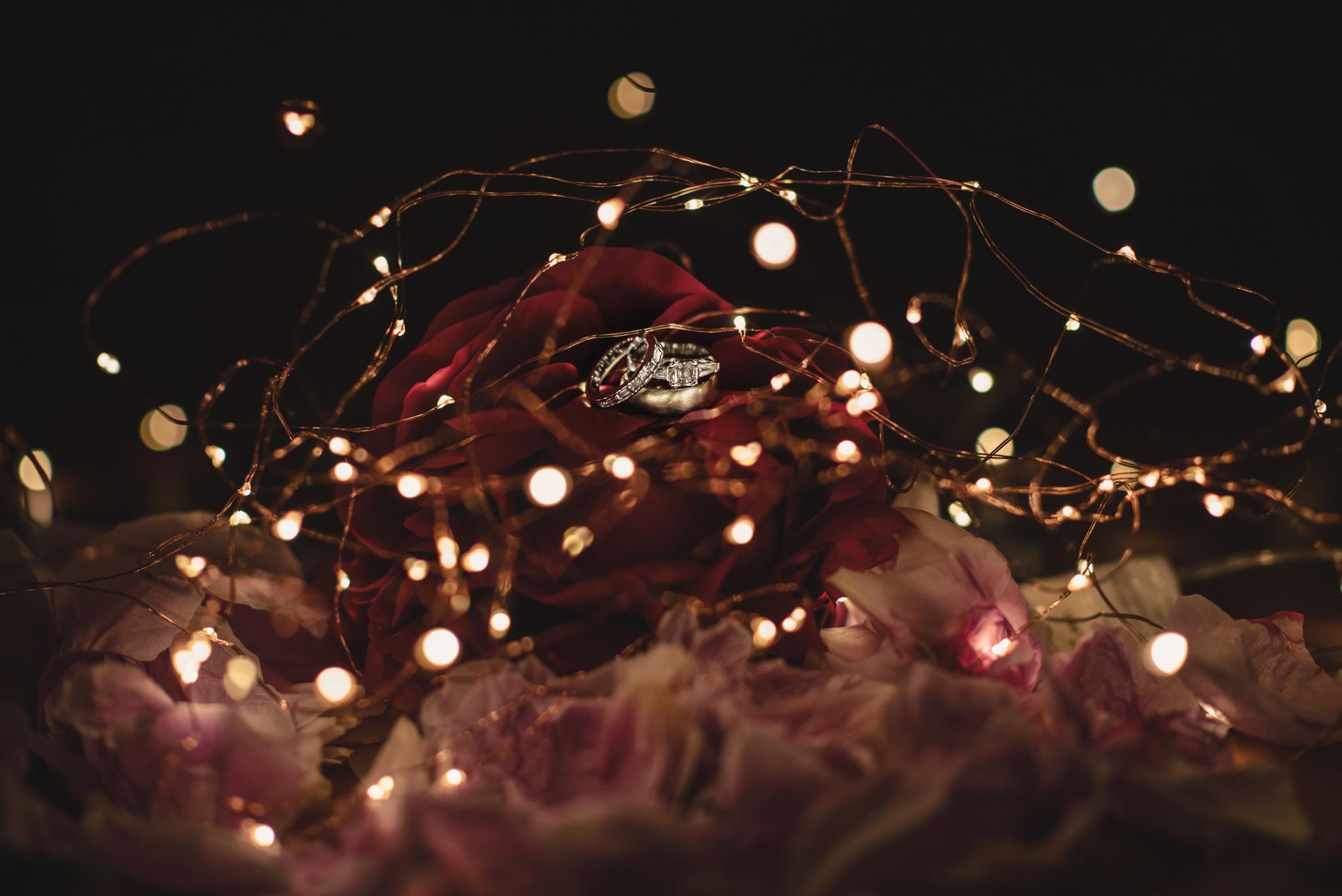 LOVELENSCAPES PHOTOGRAPHY • VISUAL POETRY • NEW ZEALAND WEDDING PHOTOGRAPHER • AUSTRALIAN WEDDING PHOTOGRAPHER • BRISBANE • MELBOURNE • SYDNEY • HOBART • TARUREKA ESTATE • ANNA CAMPBELL • 182.jpg