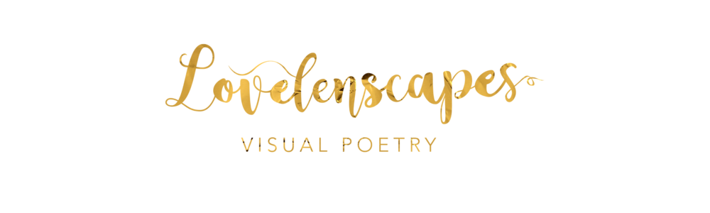 Lovelenscapes Photography • Visual Poetry • Brisbane Wedding Photographer .png