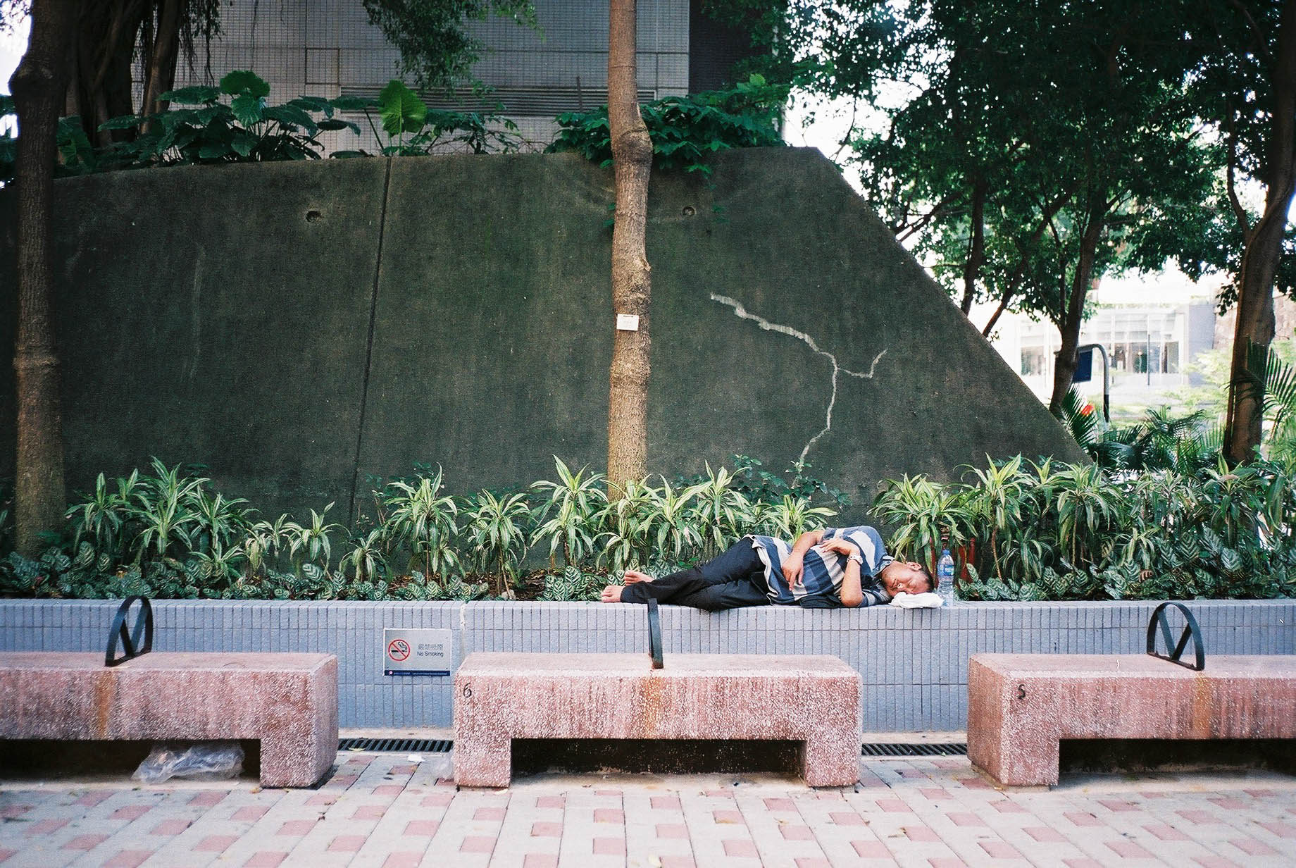 sleeping-beauty-6.jpg
