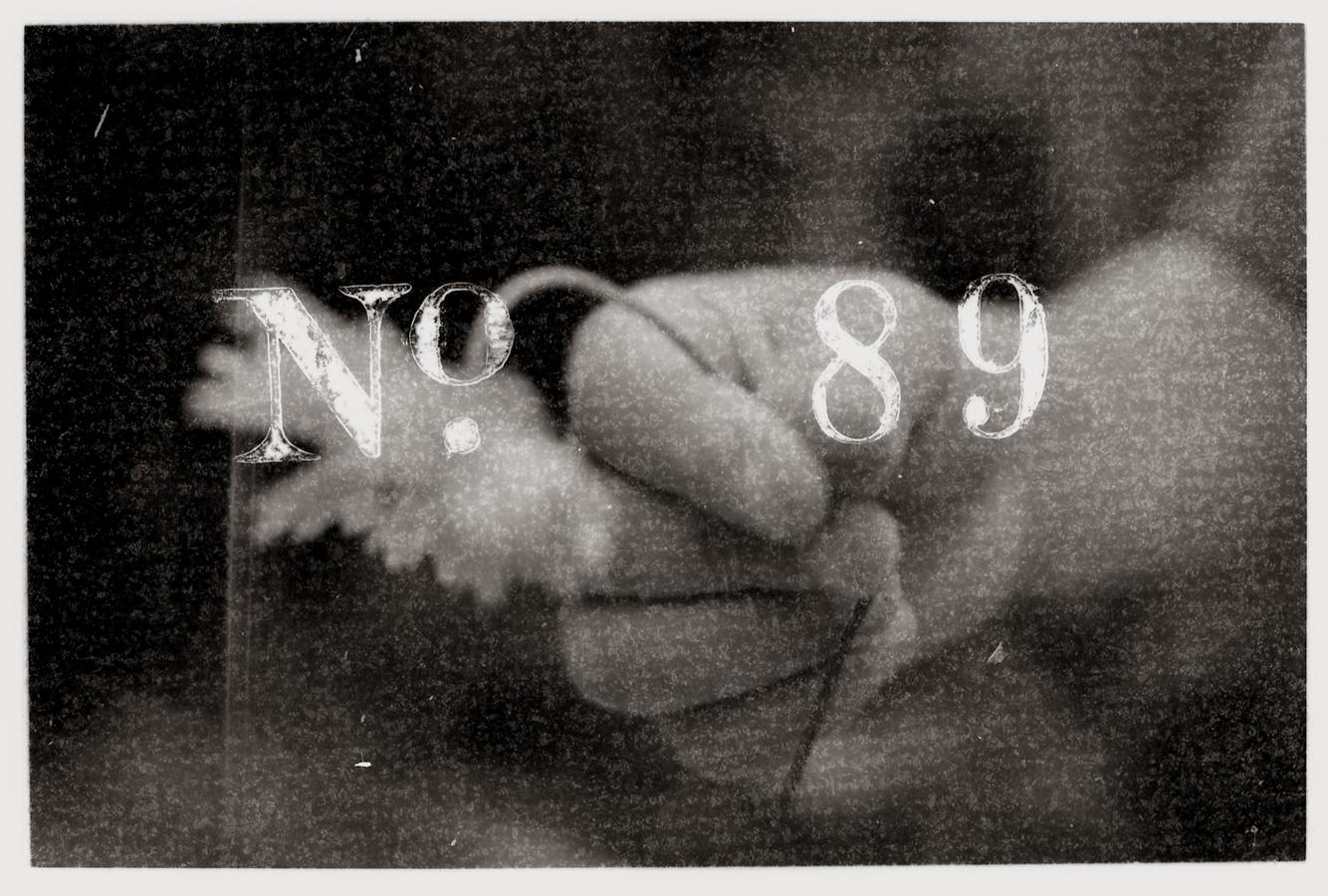 no89rsz.jpg