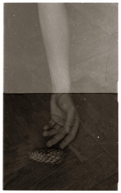 hand-pine.revela rsz.jpg