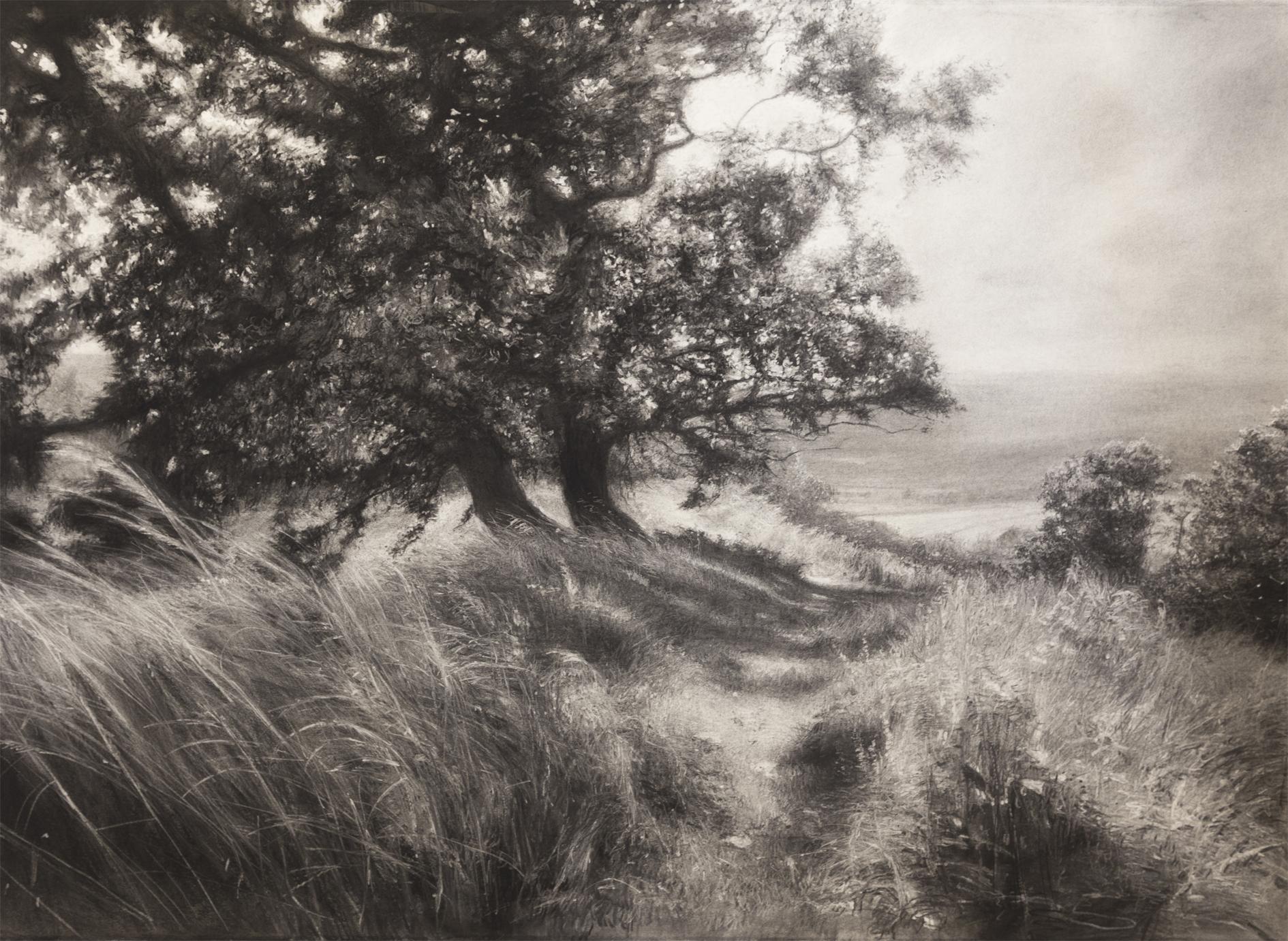 Borderlands, 2017 (charcoal, 85 x 113 cm)