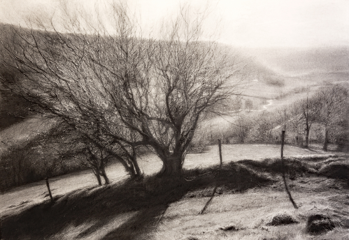 River Valley,  2018 (charcoal, 72 x 105 cm)