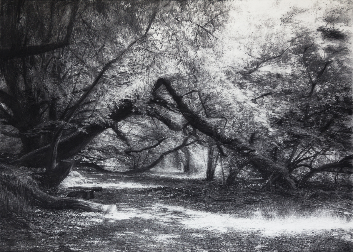 Towards This Place Lightly , 2019 (charcoal 75 x 105 cm)