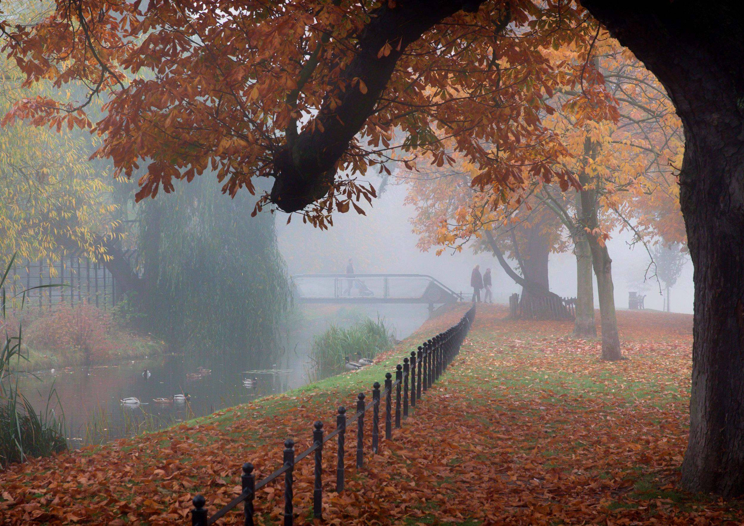 misty clissold-3.jpg