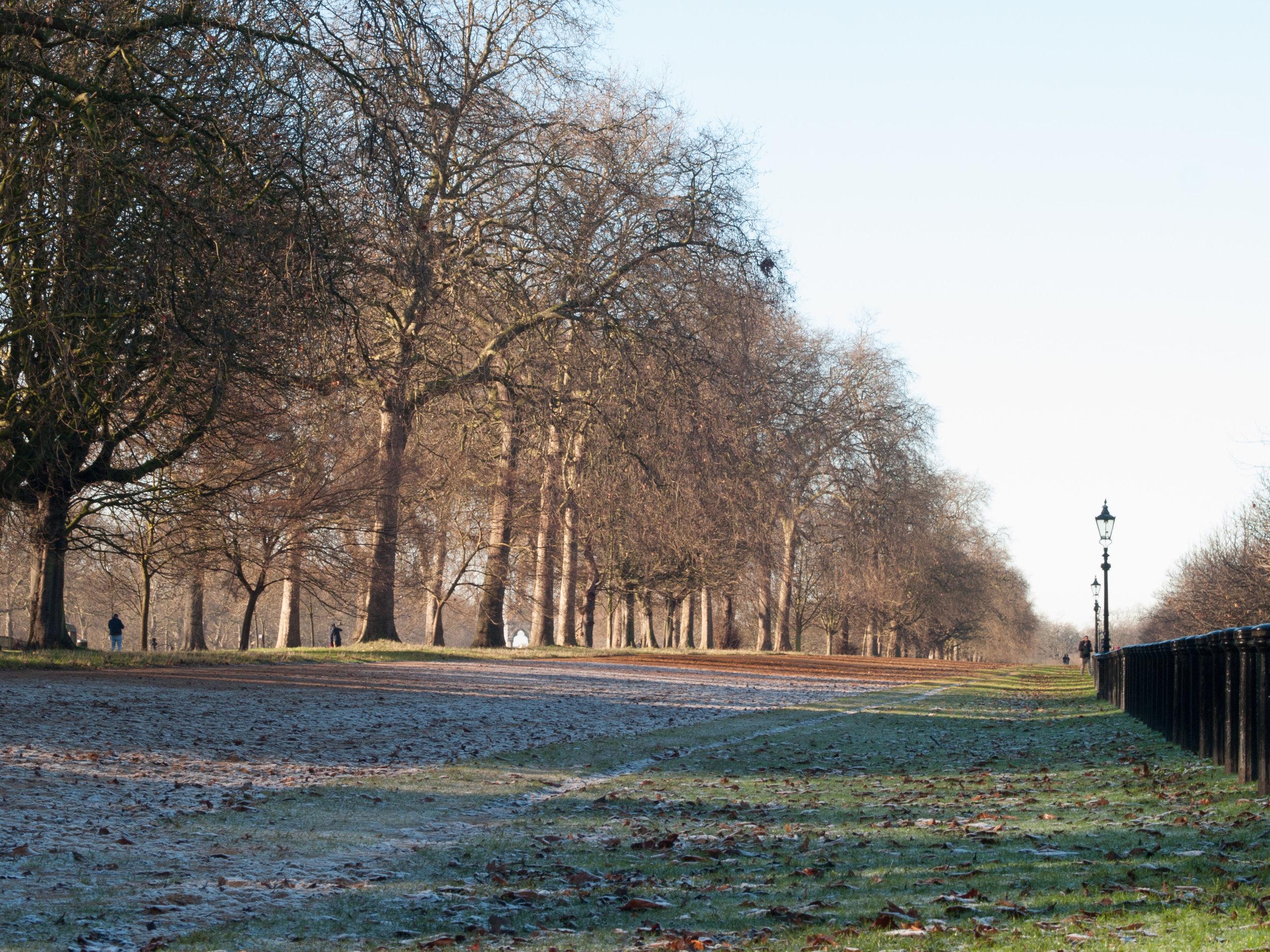 Hyde Park on a frosty morning!