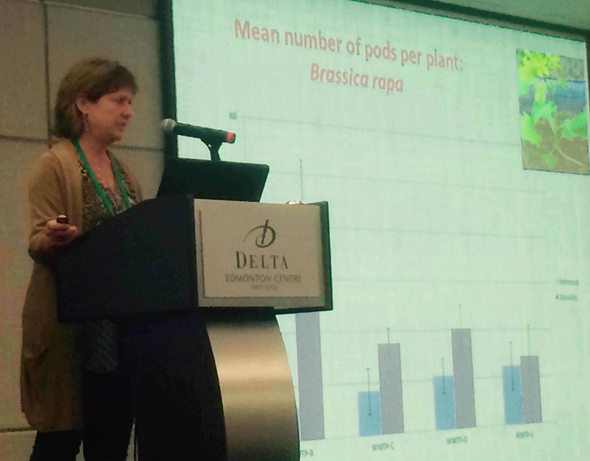 Dr. Lynda H. McCarthy, Professor, Dept. of Chemistry & Biology, Ryerson University, Toronto
