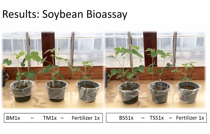 VA Tech research shows marked increase in growth & vigor in plants grown with Bloom (l) & Tagro (center).