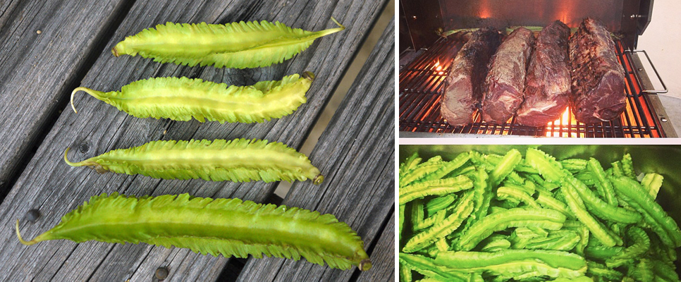 Winged Beans (Photo Credit: STRONGlk7 / Wikimedia Commons) | Chef Rick Bayless Prepping Dinner at Ortanique for the Cayman Cookout Photo Credit: Rick Bayless [Instagram]