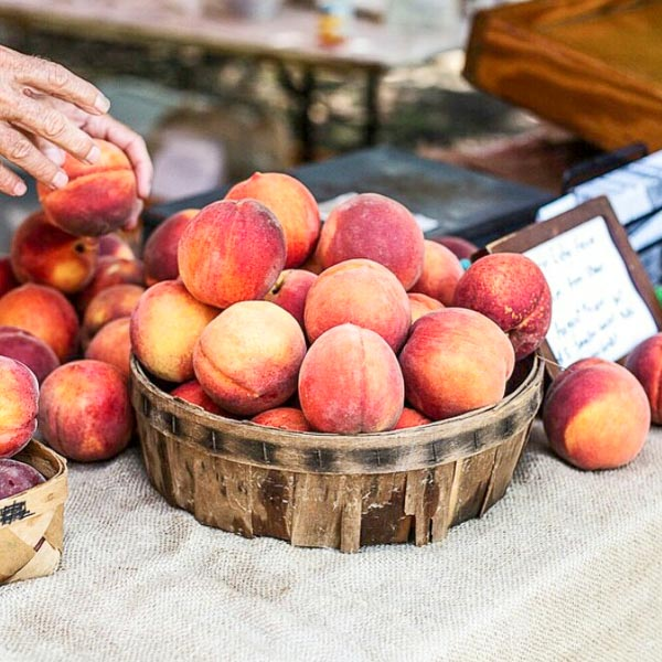 Photograph courtesy of Charleston Farmers Market
