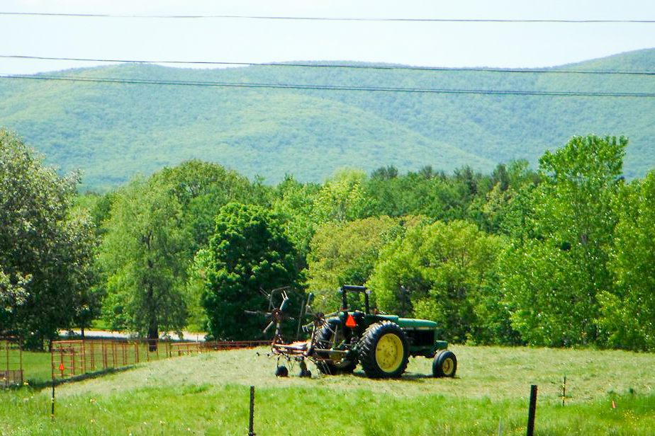 Photograph courtesy of East Mountain Farm
